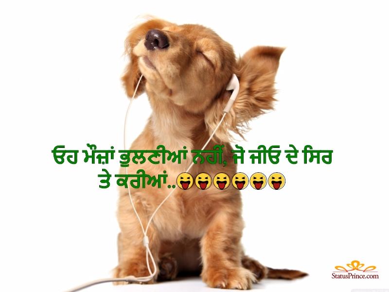Punjabi  Funny Punjabi wallpaper