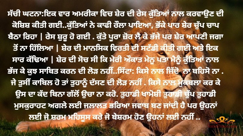 Punjabi Long messages and Punjabi Stories wallpaper