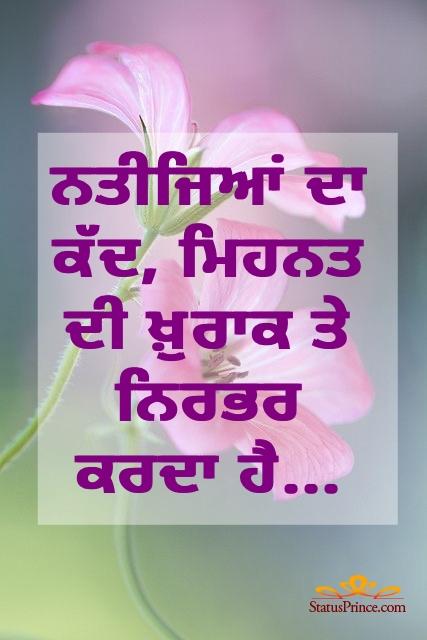 punjabi language motivational status