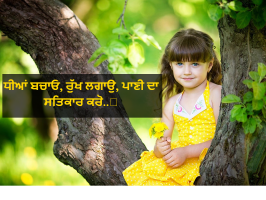 Latest Punjabi Status | New collection of Best Status