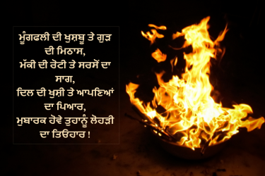 Lohri  wallpaper