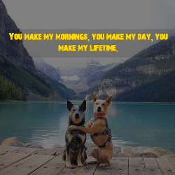 love and good morning wallpapers