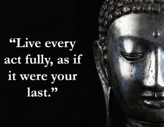 buddha quotes meditation
