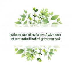 hindi shayari dosti love quotes
