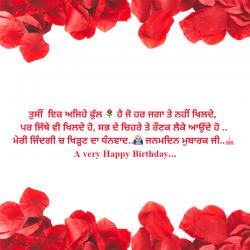 punjabi birthday caption