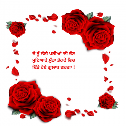 lines for rose day in punjabi