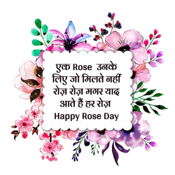 happy rose day hindi wallpapers 2018
