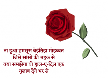 attitude-status quotes shayari. hindi
