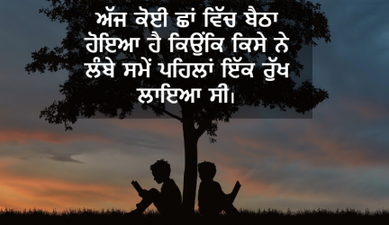 environment the punjabi meaning