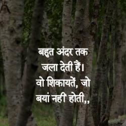 hindi shero shayari quotes