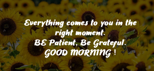 good morning wallpapers with quotes